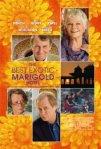 marigold1